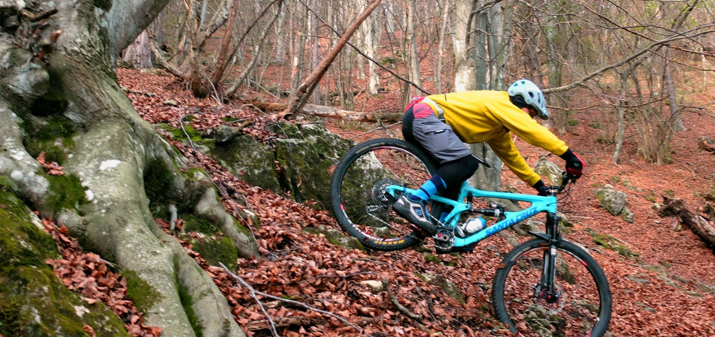 Mountainbike downhill in the autumn forest in Monte Grappa