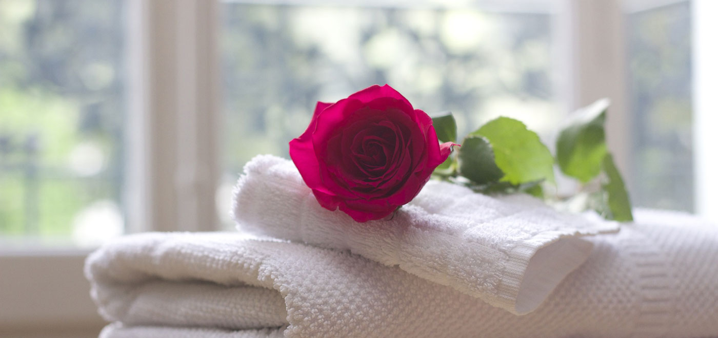 A red rose on white and clean towel