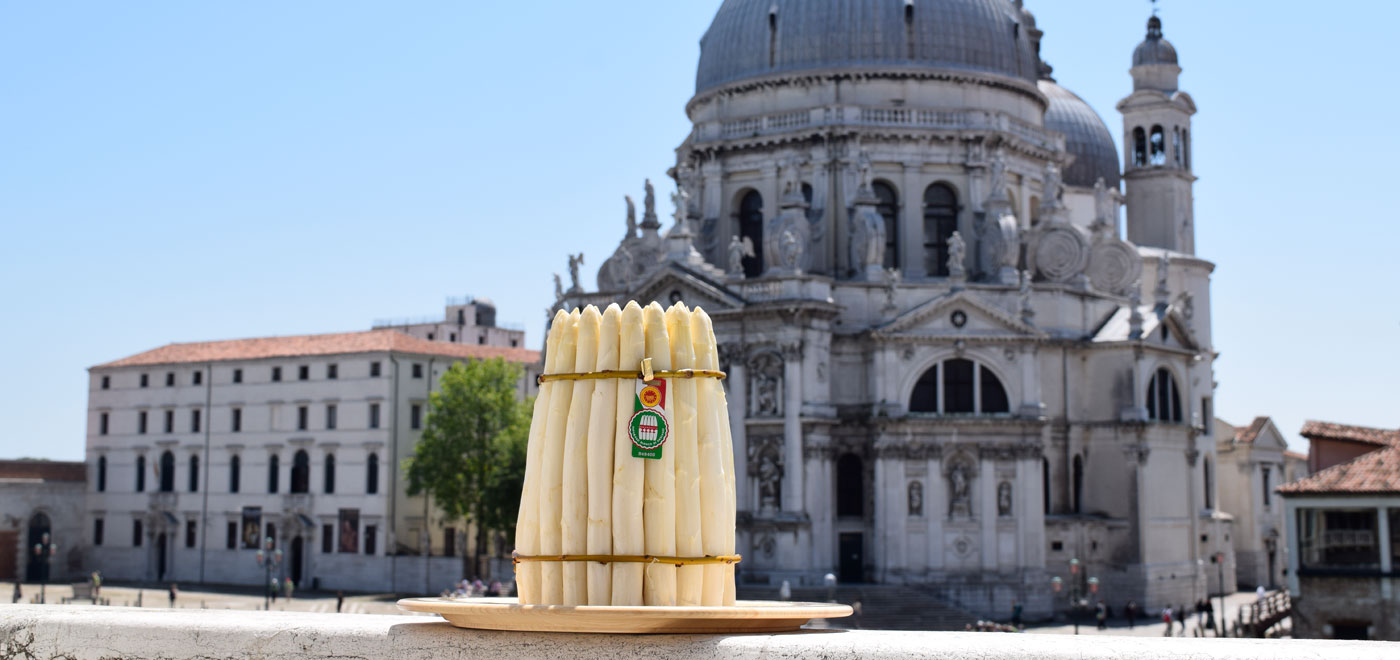 White asparagus on a plate in front of the basilica of Santa Maria della Salute in Venice