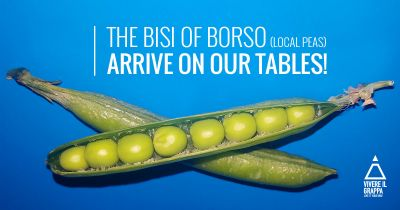 The Bisi of Borso (local peas) arrive on our tables!
