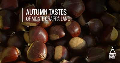 Autumn Tastes of Monte Grappa