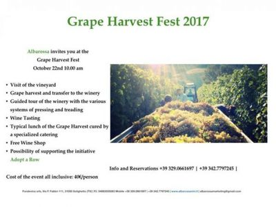 Grape Harvest Fest 2017