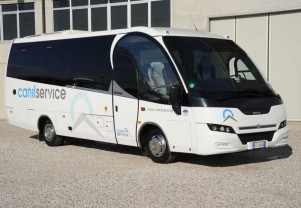 Canil Service Bus Rent Bassano